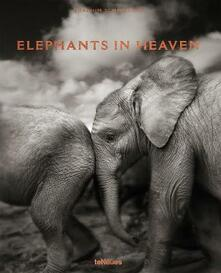Elephants in Heaven - cover