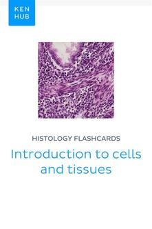 Histology flashcards: Introduction to cells and tissues