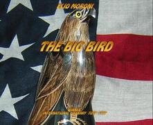 Thebig bird