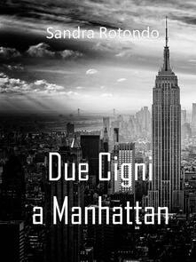 Due cigni a Manhattan - Sandra Rotondo - ebook