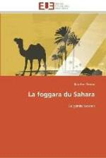 La foggara du sahara