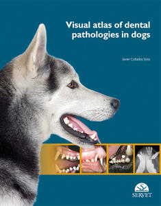 Visual atlas of dental pathologies in dogs