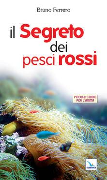 Festivalpatudocanario.es Il segreto dei pesci rossi Image