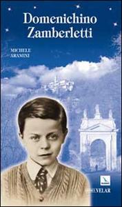 Libro Domenichino Zamberletti Michele Aramini