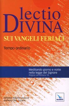 Antondemarirreguera.es Lectio divina sui Vangeli feriali. Tempo ordinario Image