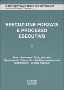 L' Esecuzione forzata e processo esecutivo