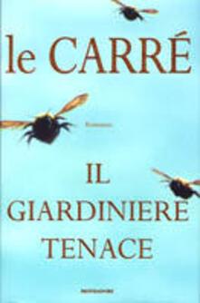 Camfeed.it Il giardiniere tenace Image