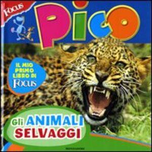 Libro Focus Pico. Animali selvaggi Federica Baroni