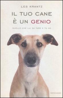 Squillogame.it Il tuo cane è un genio. Quello che lui sa fare e tu no Image