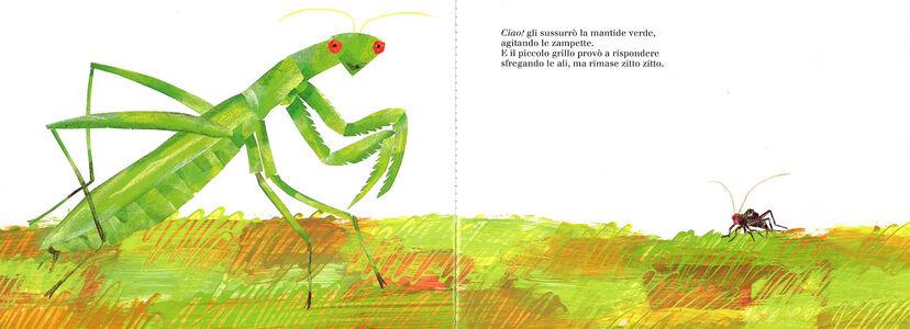 Foto Cover di Il piccolo grillo zitto zitto. Libro sonoro, Libro di Eric Carle, edito da Mondadori 1