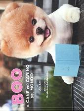 Boo. Il cane più carino del mondo