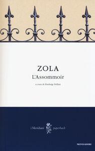 Libro L' Assommoir Émile Zola