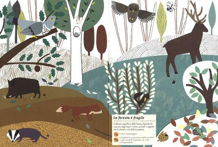 Libro Animali della foresta. Il mio albo della natura. Con adesivi Olivia Cosneau 4