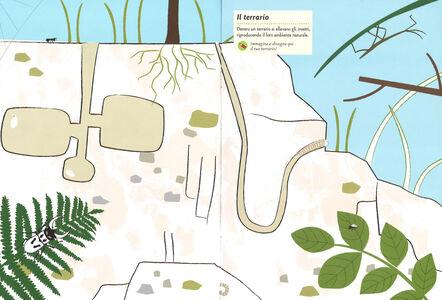 Foto Cover di Insetti del giardino. Il mio albo della natura. Con adesivi, Libro di Olivia Cosneau, edito da Mondadori 4