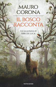 Winniearcher.com Il bosco racconta: Storie del bosco antico-Torneranno le quattro stagioni Image
