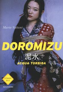 Doromizu. Acqua torbida - Mario Vattani - copertina