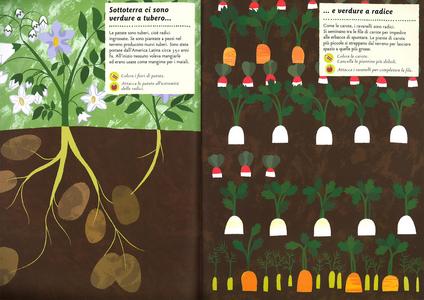 Libro I colori dell'orto. Il mio albo della natura. Con adesivi Olivia Cosneau 1