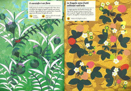 Libro I colori dell'orto. Il mio albo della natura. Con adesivi Olivia Cosneau 2