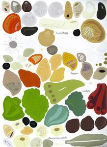 Libro Gli abitanti del mare. Il mio albo della natura. Con adesivi Olivia Cosneau 3