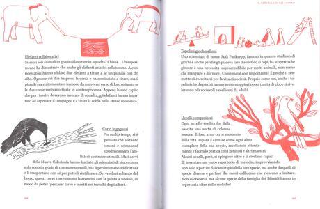 Qui dentro. Guida alla scoperta della mente - Isabel Minhós Martins,Maria Manuel Pedrosa - 5