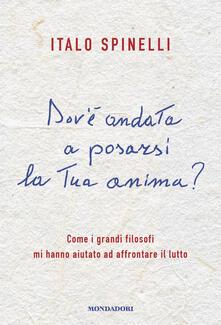 Dov'è andata a posarsi la tua anima? Come i grandi filosofi mi hanno aiutato ad affrontare il lutto - Italo Spinelli - copertina