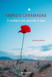 Il numero più grande è due - Fabrizio Caramagna - copertina