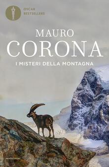 Ascotcamogli.it I misteri della montagna Image