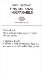 Una distanza inseparabile - Camillo Pennati - copertina