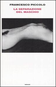 Foto Cover di La separazione del maschio, Libro di Francesco Piccolo, edito da Einaudi