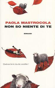 Foto Cover di Non so niente di te, Libro di Paola Mastrocola, edito da Einaudi