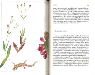 Libro Un giardino semplice. Storie di felici accoglienze e armoniose convivenze Paolo Pejrone 4