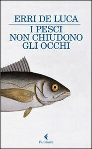 Libro I pesci non chiudono gli occhi Erri De Luca