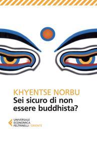 Sei sicuro di non essere buddhista?