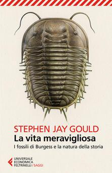 La vita meravigliosa. I fossili di Burgess e la natura della storia - Stephen Jay Gould - copertina