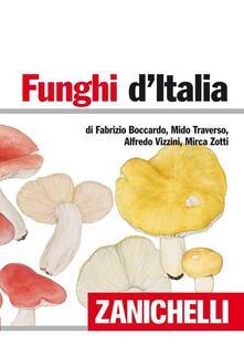 Daddyswing.es Funghi d'Italia Image