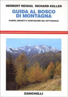 Rallydeicolliscaligeri.it Guida al bosco di montagna. Alberi, arbusti e vegetazione del sottobosco Image