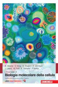 L' essenziale di biologia molecolare della cellula. Con Contenuto digitale (fornito elettronicamente) - Bruce Alberts,Dennis Bray,Karen Hopkin - copertina