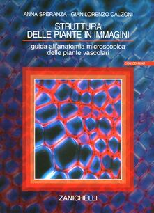 Premioquesti.it Struttura delle piante in immagini. Guida all'anatomia microscopica delle piante vascolari. Con CD-ROM Image