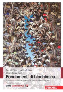 Filippodegasperi.it Fondamenti di biochimica. Con e-book Image