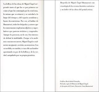 Michelangelo. Biografía de un genio. Ediz. spagnola - Bruno Nardini - 2