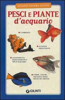 Camfeed.it Pesci e piante d'acquario Image