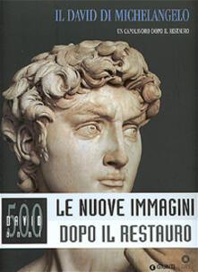 Il David di Michelangelo. Un capolavoro dopo il restauro