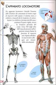 Libro Il corpo umano  2