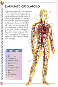Libro Il corpo umano  3