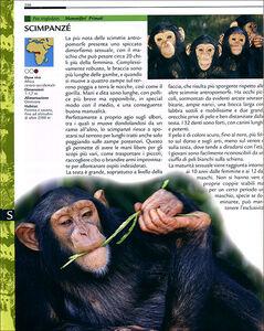 Libro Grande dizionario illustrato degli animali Emanuela Busà 2