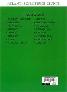 Geografia generale - Adriana Rigutti - 5