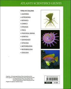 Zoologia - Adriana Rigutti - 2