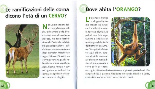 Libro Gli animali Mariagrazia Bertarini , Paolo Fabris , Elisa Prati 2