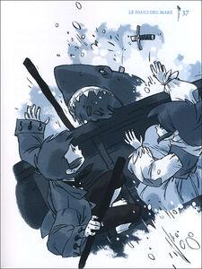 Libro L' isola degli squali Alain Surget , Annette Marnat 2