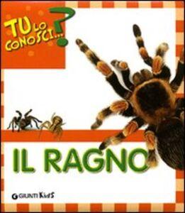 Libro Il ragno Sara Reggiani